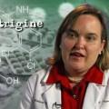 Lamotrigine and valproic acid in pregnancy
