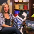 Meet The Contestants Part 3 – Greatest American Dog