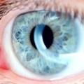 Oral bisphosphonates linked to ocular side effects