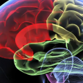 Rafael Yuste: 3 Ways the Brain Activity Map Will Revolutionize Medicine