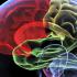 Rafael Yuste: 3 Ways the Brain Activity Map Will Revolutionize Medicine