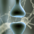 First Attack Multiple Sclerosis Associated with Grey Matter