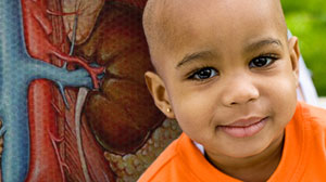Premature Renal Failure Risk Increased for Some Childhood Cancer Survivors