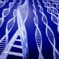 Human Genome Project Identifies New Genetic Disorder