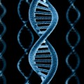 Scientists Create New Self-Replicating Genetic Code