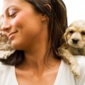 Jealousy in Dogs Similar to Humans