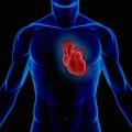 "Artificial Heart Patient has Never ""Felt So Good"""