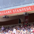 Get Your Cowboy On at the 2015 Calgary Stampede