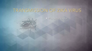Exploring the Risk Factors and Symptoms of Zika Virus