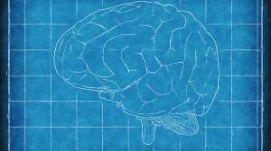 brain-1845941_1280